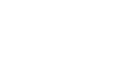 elring logo blanc