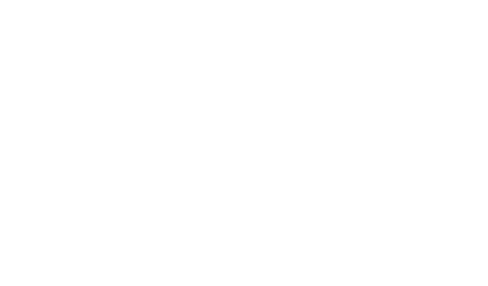 snr logo blanc